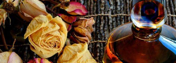 Parfümün Büyülü Dünyası